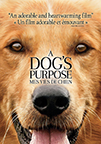 A_Dogs_Purpose.jpg